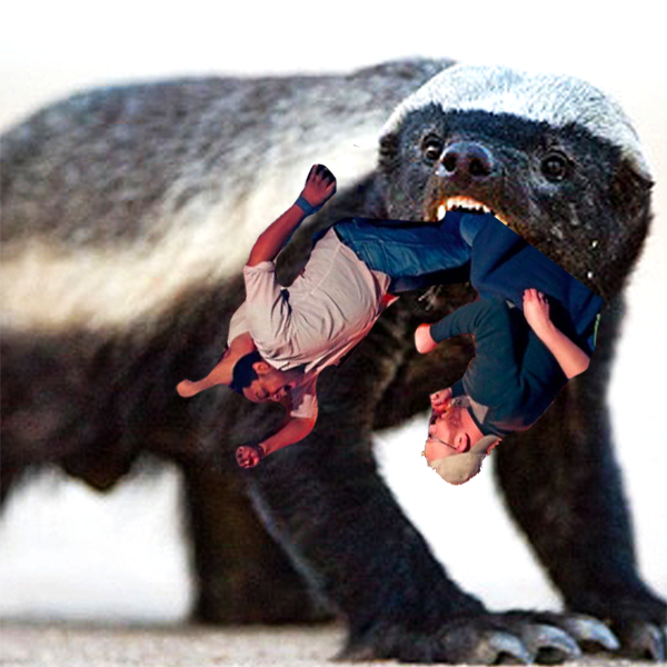 honey-badger-ate-my-team